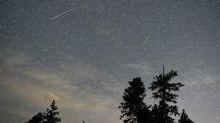 Look up! Leonid meteor shower visible this weekend