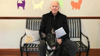 Joe Biden adopts rescue dog, a German shepherd named Major