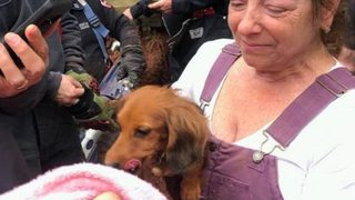 New Jersey police rescue dachshund trapped in pipe for 20 hours