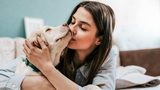 Study - Dogs in Bed May Help Women Sleep Better