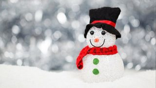 3 cited for beheading snowman decoration