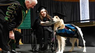 Magna Dog Laude: Service dog made honorary college graduate