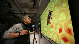 Samsung Unveils The Wall A 219 Inch Micro Led Tv Boston 25 News