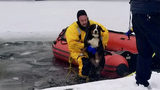 Ohio firefighters rescue puppy from icy pond