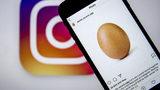 """World Record Egg"" Finally Cracks, Revealing Important Message"