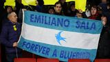 Cardiff City fans pay tribute to Emiliano Sala during a game shortly after his disappearance.