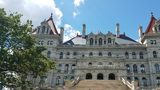 An assemblyman has proposed a referendum that would ask voters to split New York into two states.