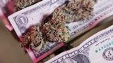 South Georgia Traffic Stop Nets 140 Pounds of Marijuana