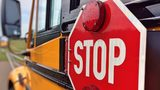 New Jersey authorities said a Newark school bus driver was high on heroin and overdosing when she crashed the bus into a tree. None of the 11 special needs students on board were injured. Photo: Pixabay