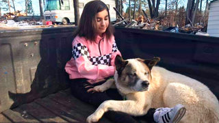 Dog lost during Camp Fire, reunited with family 101 days later