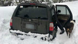 A man survived on hot sauce while he was stranded five days in his SUV with his dog because of a snowstorm. (Photo: Deschutes County Sheriff's Office)
