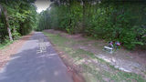 A May 2013 Street View image shows a memorial at the rural spot in Ozark, Alabama, where the bodies of J.B. Beasley and Tracie Hawlett, both of Dothan, were found shot to death Aug. 1, 1999, in the trunk of Beasley's car. Photo: Google