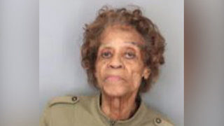90-year-old Memphis woman points gun at victim over leaves, police say