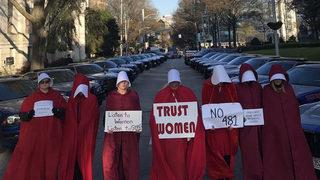 Georgia Senate approves controversial abortion'heartbeat bill
