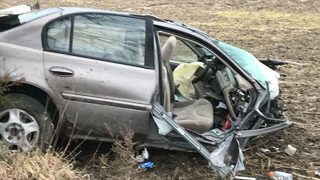 3 teens injured after car crashes into tree, splits in half