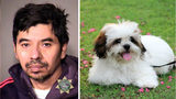 Fidel Lopez, 52, of Portland, Oregon, admitted to sexually assaulting his fiancée's dog, a Lhasa Apso mix named Estrella (not pictured), on Nov. 18, 2018. (Multnomah County Sheriff's Office/Pixabay)