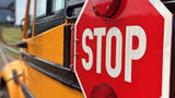 7-Year-Old in New York Struck and Killed by Van after Getting Off School Bus