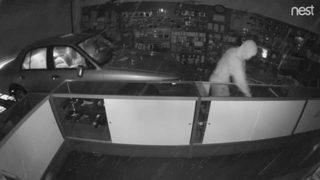 Georgia driver steals weapons as he drives car through gun store