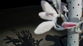 Easter Bunny brawler in Florida wanted in NJ