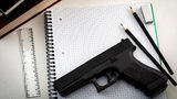 Florida Senate Passed Bill to Arm Teachers