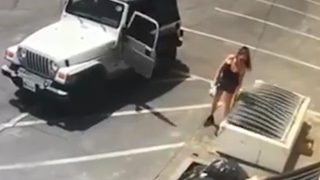 Police ID, arrest California woman seen on video throwing 7 newborn puppies into trash bin