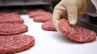 E. coli fears prompt recall of 110,000 pounds of ground beef