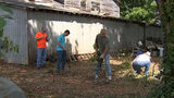 Neighbors Volunteer to Help Disabled Veteran After Complaints About Overgrown Yard