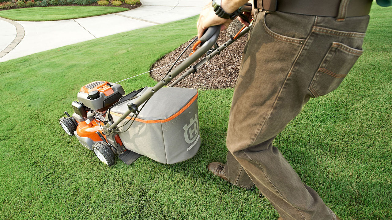 Illegal mowing: Teens can't be paid to cut neighbors' grass | WSOC-TV