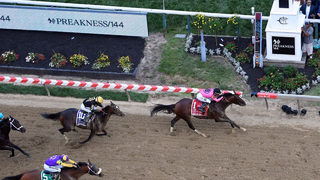 War of Will wins 2019 Preakness Stakes