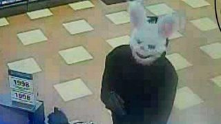 Police searching for thief who wore animal mask during robberies