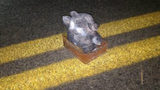 FBI Releases Photo of Teddy Bear Bomb Placed on Highway in South Carolina