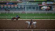 FILE PHOTO: A horse died after exercising Saturday, the 30th equine death since December, at historic Santa Anita Park, leading to the ban of a Hall of Fame trainer, track officials said. (Photo: David McNew/Getty Images)