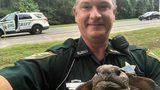 SEE: Deputy Detains Tortoise for 'Impending Traffic Flow'