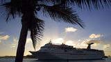 A carnival cruise ship passes a palm tree. A crew member from the Carnival Victory fell overboard about 30 miles outside of Cuba as the ship was returning to Miami.