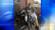 A woman said her dogs saved her life when they attacked the men who stabbed her while they were on a walk. (Photo: WPXI.com)