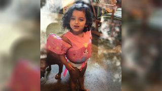 Police searching for toddler reported missing from Michigan campsite