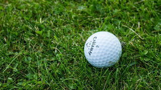 6-year-old girl dies after father accidentally hits her with golf ball, police say
