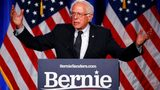 "Democratic presidential candidate, Sen. Bernie Sanders, I-Vt., gives a speech on his ""Medicare for All"" proposal, Wednesday, July 17, 2019, at George Washington University in Washington. AP Photo/Patrick Semansky"