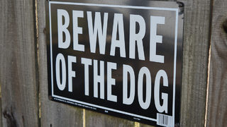 Man dies after being attacked by multiple 'aggressive dogs,