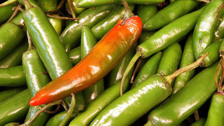Spicy diet linked to dementia, study says