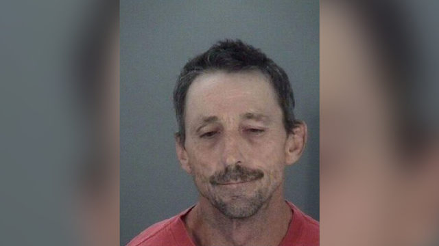 Florida man rode horse during attempted house burglary, deputies say
