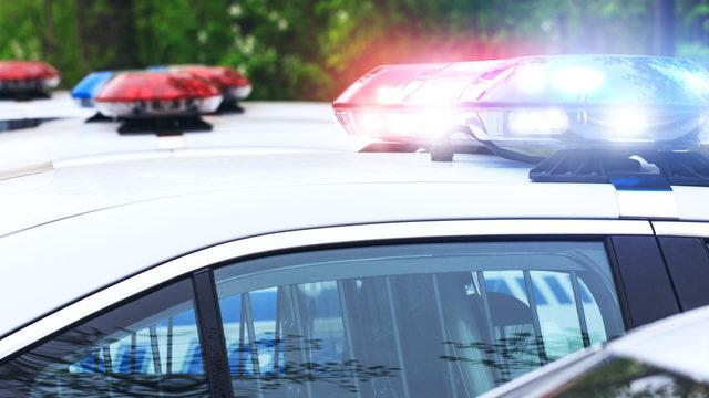 False image of heroism': Alabama cop faked being victim of