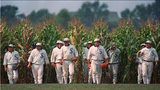 "In this June 22, 1997 photo, people portraying ghost players emerge from a cornfield as they reenact a scene from the movie ""Field of Dreams"" at the movie site in Dyersville, Iowa."