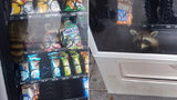 A raccoon became trapped in a vending machine Wednesday at Pine Ridge High School in Deltona, Florida, the Volusia County Sheriff's Office said. (Volusia County Sheriff's Office)