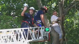 WATCH: Man stuck in tree while trying to rescue cat