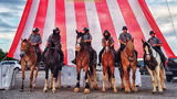 Pennsylvania State Police are looking for a few good horses to augment their patrol units.