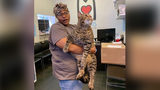 Philadelphia feline looking for new home