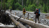 Hikers cross a log bridge on the Wonderland Trail at Mount Rainier National Park in Washington state.