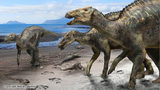 A drawing of what the new duck-billed dinosaur discovered in northern Japan might have looked like.