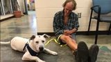 WATCH: Homeless Tennessee man reunited with dog after weeks apart